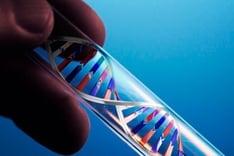 EXTRACCIÓN-ADN-2