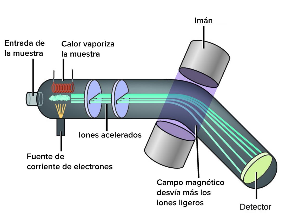 ESPECTROMETRÍA DE MASAS (MS)