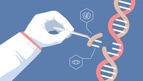 CRISPR-Picture