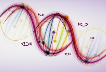 La variabilidad genética de las poblaciones de organismos acuáticos