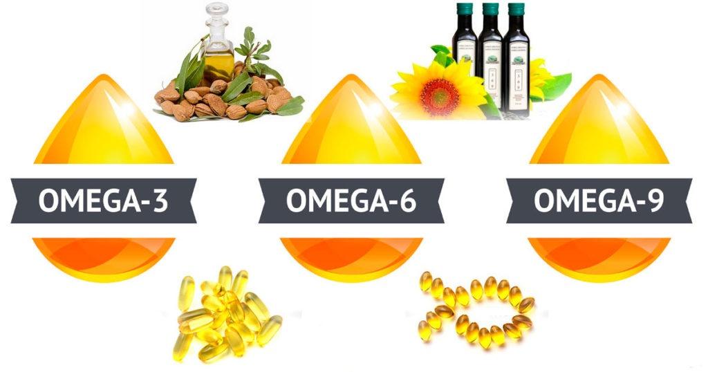 Hoy quiero hablarte de… Los ácidos grasos importancia y clasificación