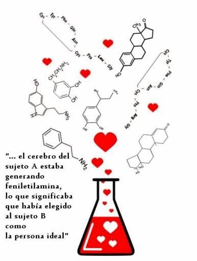 Amor a primera… ¿reacción química?