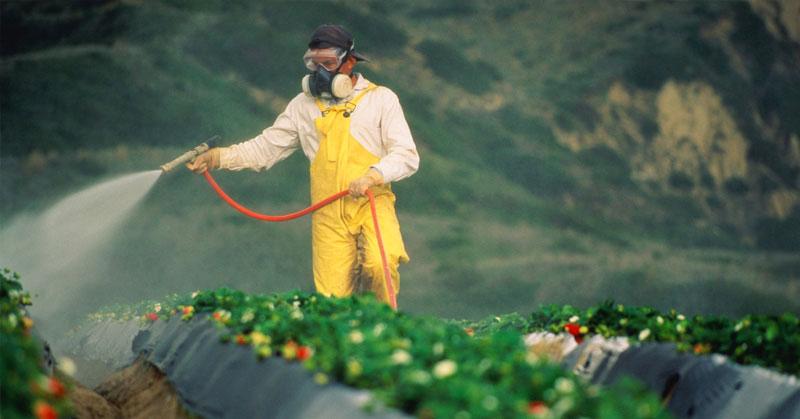 Análisis de pesticidas residuales I