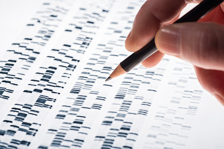 Genotipificar mediante secuenciación de siguiente generación