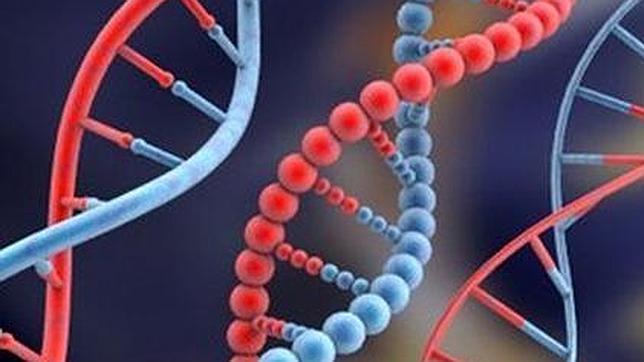 Las ventajas y limitantes de las plataformas de la NGS en los análisis de la diversidad biológica