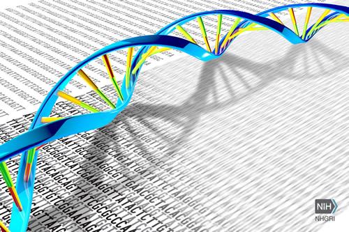 Soluciones Analitek/Illumina: ¿Cómo determinar los reactivos y corridas de secuenciación requeridas para alcanzar la cobertura deseada para tu experimento?