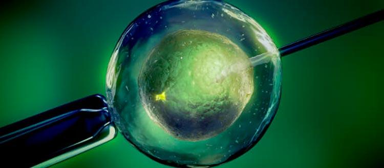 Caja de pandora: La nueva humanidad III